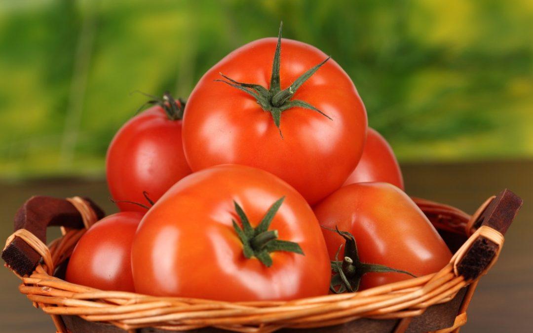 9 powodów, dla których warto jeść pomidory