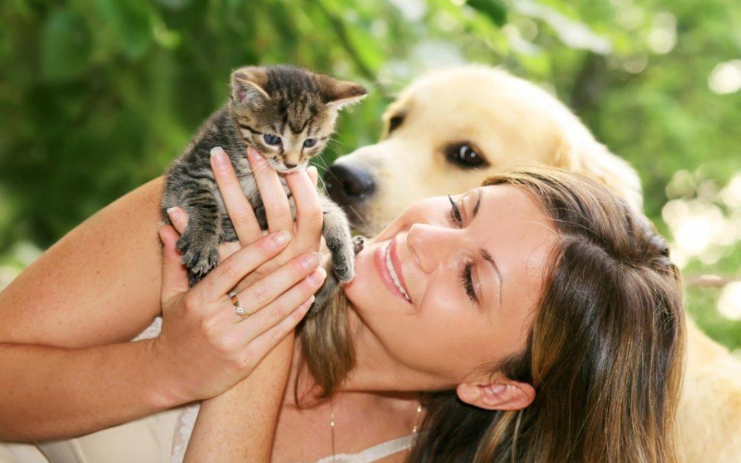 Terapia z udziałem zwierząt, czyli najlepszy przyjaciel człowieka w roli uzdrowiciela